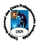 CNCPI